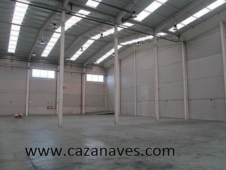 Nave industrial en alquiler en calle , Sur en Leganés - 244983730