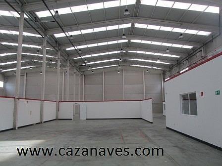 Nave industrial en alquiler en calle , Sur en Leganés - 244983733