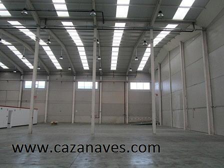 Nave industrial en alquiler en calle , Sur en Leganés - 244983738