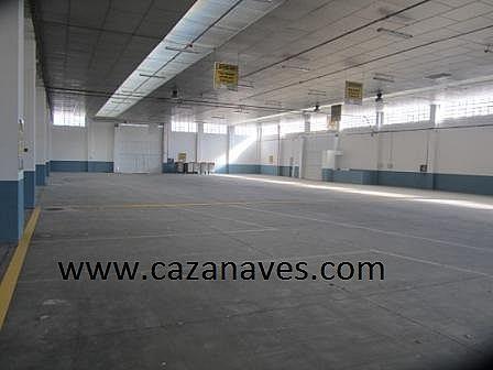 Nave industrial en alquiler en calle , San Cristóbal en Madrid - 233539639