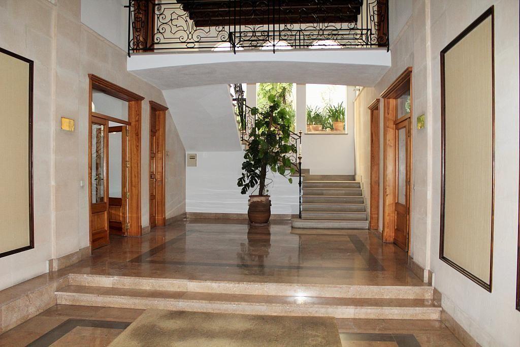 Vestíbulo - Despacho en alquiler en calle Can Ribera, Cort, Jaume III en Palma de Mallorca - 239038187
