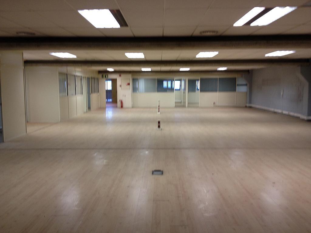 Oficina - Nave industrial en alquiler en calle Colom, Can Parellada en Terrassa - 243312821