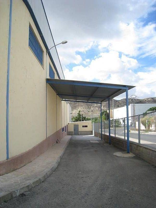 Foto - Nave industrial en alquiler en calle Tres Hemanas, Aspe - 248441222