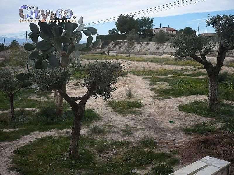 Foto - Chalet en alquiler en Molina de Segura - 296384456