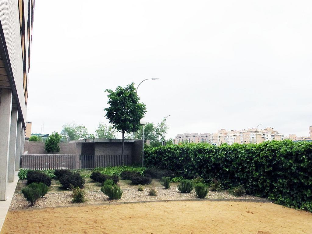 Piso en alquiler en calle Archiduque Carlos, Sanchinarro en Madrid - 273017325