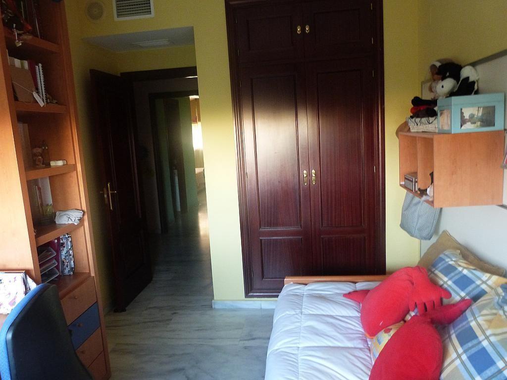 Piso en alquiler en calle Avicena, Doctor Barraquer - G. Renfe - Policlínico en Sevilla - 282433639