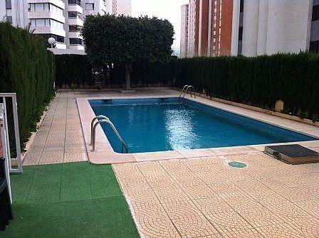 Imagen sin descripción - Apartamento en venta en Levante en Benidorm - 271293410