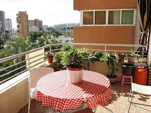 Imagen del inmueble - Apartamento en venta en Alicante/Alacant - 366994363