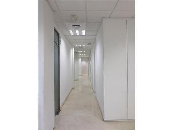 Oficina en alquiler en calle Colon, El Pla del Remei en Valencia - 271511926