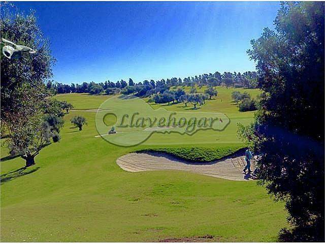 Foto - Casa en alquiler en calle Pedanias, Rural en Jerez de la Frontera - 387128794