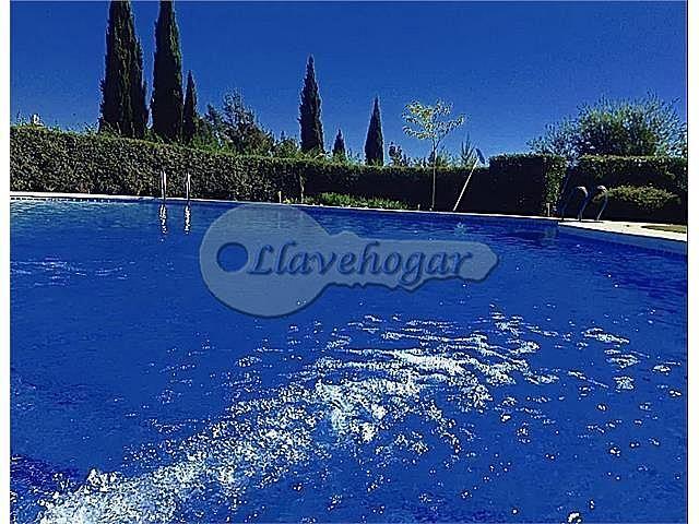 Foto - Casa en alquiler en calle Pedanias, Rural en Jerez de la Frontera - 387128824
