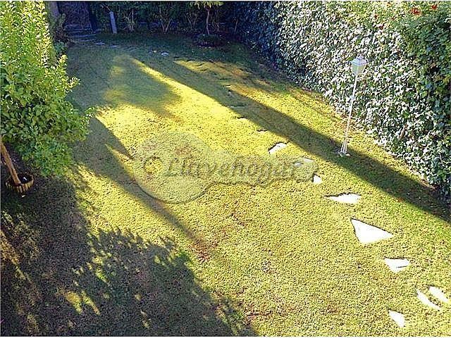 Foto - Casa en alquiler en calle Pedanias, Rural en Jerez de la Frontera - 387128875