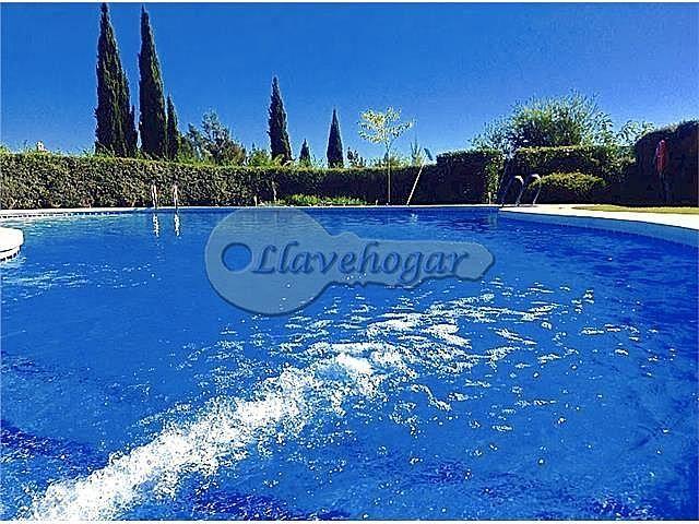 Foto - Casa en alquiler en calle Pedanias, Rural en Jerez de la Frontera - 387128884