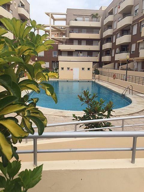 Imagen sin descripción - Apartamento en alquiler en Aguadulce - 310318855