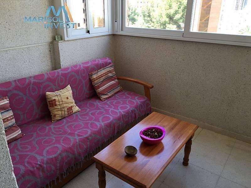 Foto - Apartamento en venta en calle Rincon de Loix, Rincon de Loix en Benidorm - 287839127