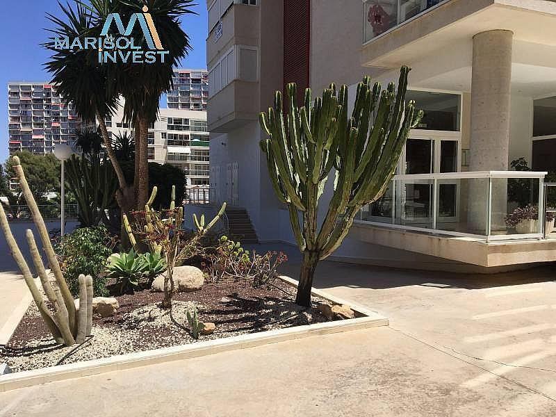 Foto - Apartamento en venta en calle Rincon de Loix, Rincon de Loix en Benidorm - 287839169