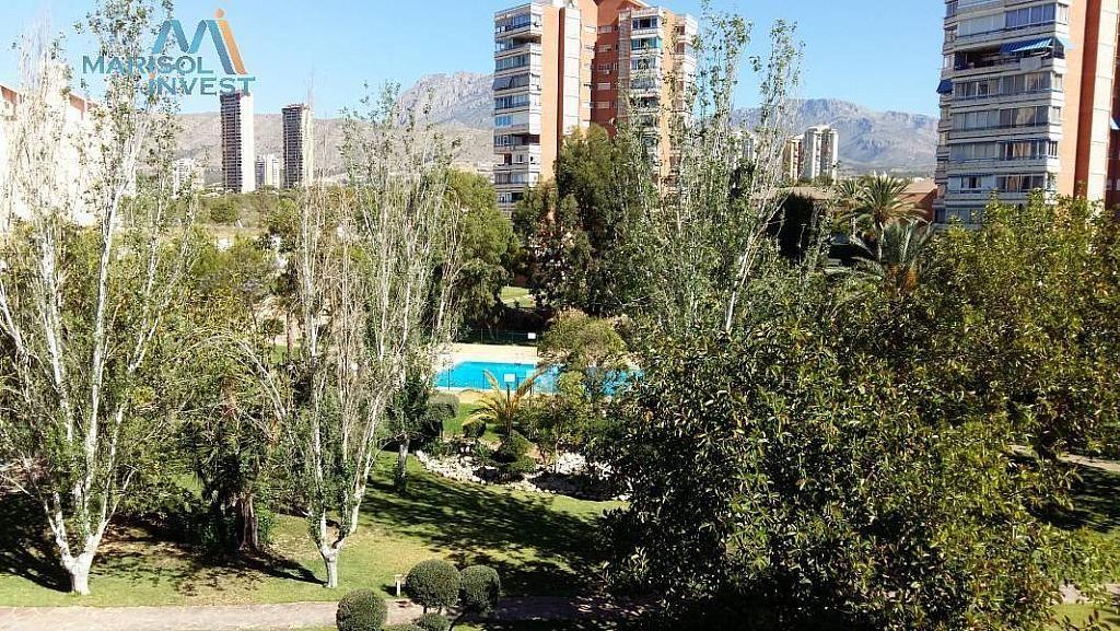Vistas - Apartamento en venta en calle Poniente, Poniente en Benidorm - 293745809