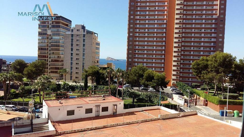 Entorno - Apartamento en venta en calle Poniente, Poniente en Benidorm - 293745851