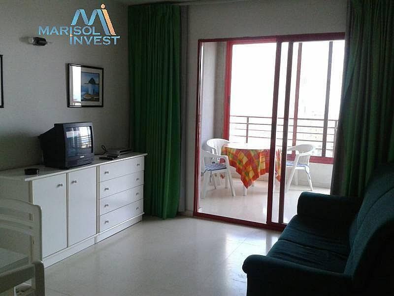 Foto - Apartamento en venta en calle Juzgados, Benidorm - 297689741