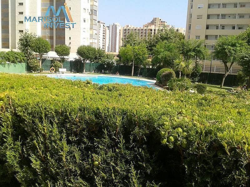 Foto - Apartamento en venta en calle Juzgados, Benidorm - 297689744