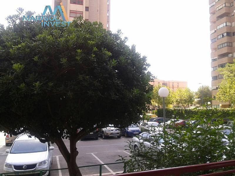 Foto - Apartamento en venta en calle Juzgados, Benidorm - 297689747