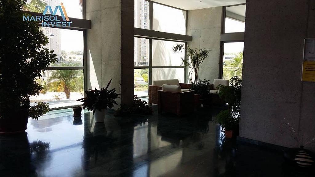 Foto - Apartamento en venta en vía Parque, Poniente en Benidorm - 312639626
