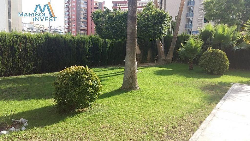 Foto - Apartamento en venta en calle Poniente, Poniente en Benidorm - 324470726