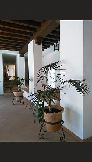 - Ático en alquiler en Sanlúcar de Barrameda - 284070121