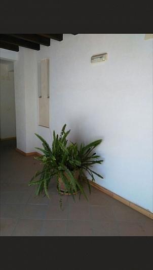 - Ático en alquiler en Sanlúcar de Barrameda - 284070139