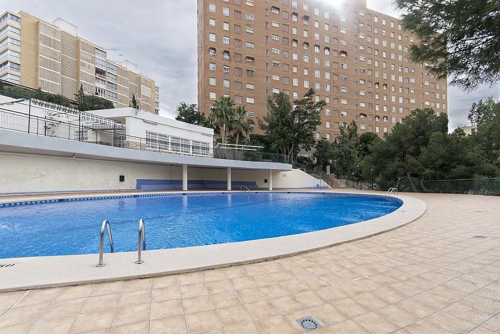 Imagen sin descripción - Apartamento en venta en Poniente en Benidorm - 285329013