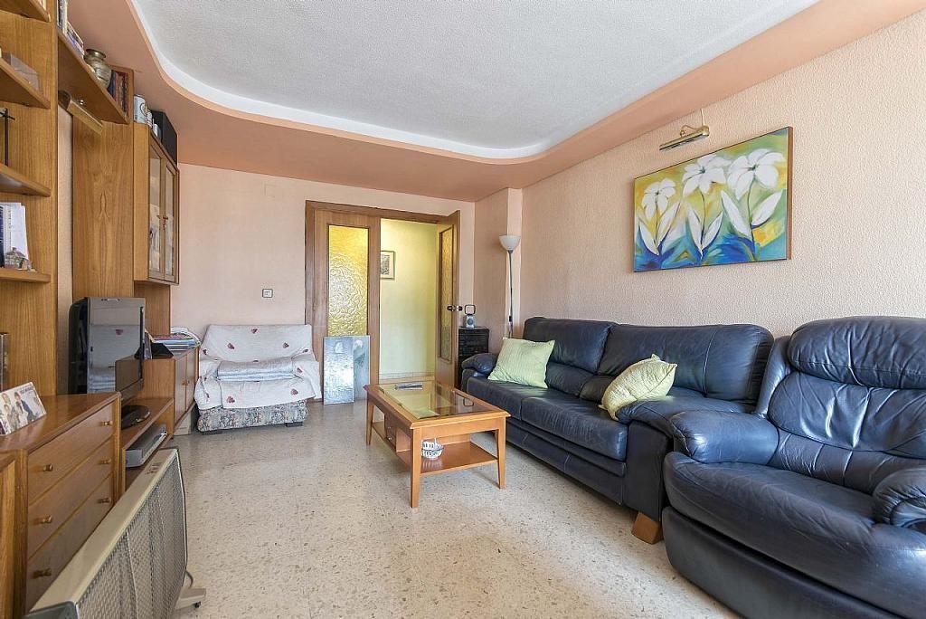 Imagen sin descripción - Apartamento en venta en Poniente en Benidorm - 285329022