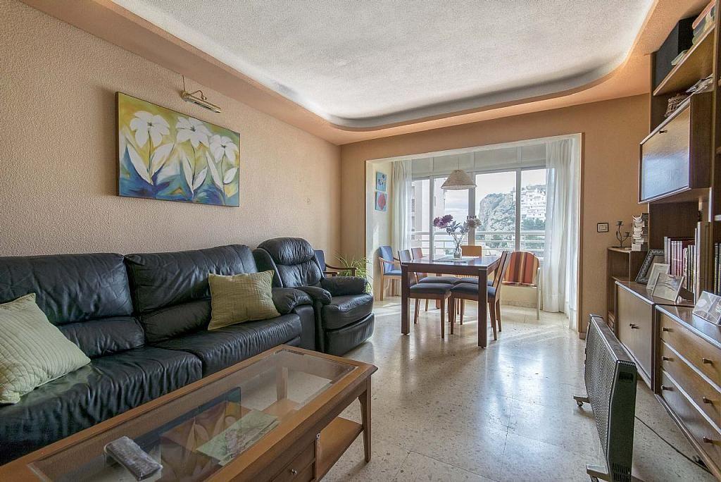Imagen sin descripción - Apartamento en venta en Poniente en Benidorm - 285329034