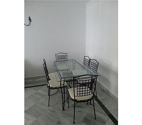 Apartamento en alquiler en Nueva Andalucía-Centro en Marbella - 288204095