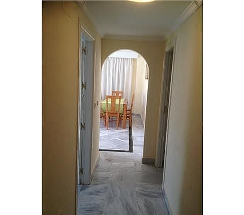 Apartamento en alquiler en Nueva Andalucía-Centro en Marbella - 288204215
