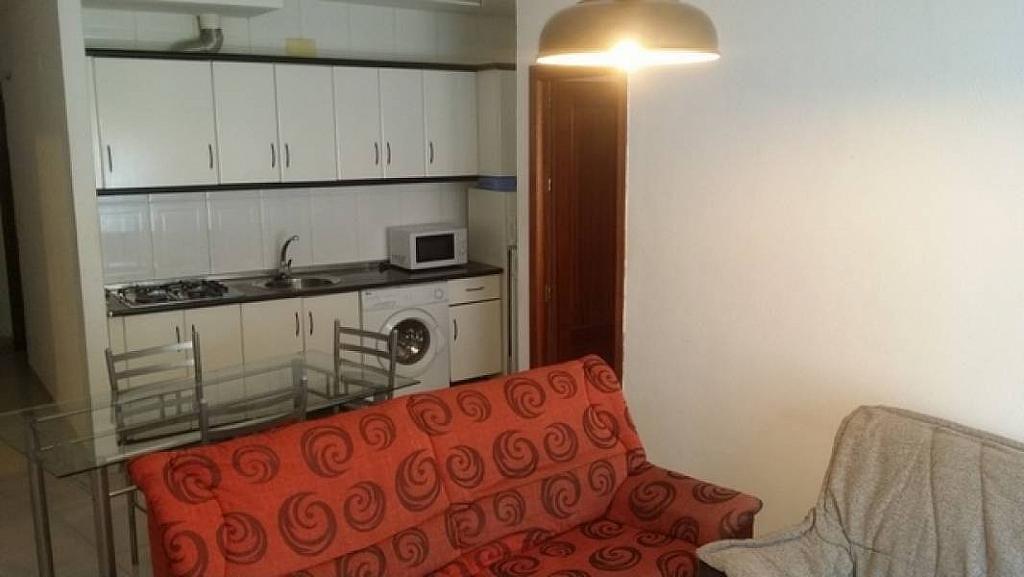 Foto - Piso en alquiler en calle Cartuja, Norte en Granada - 294117542