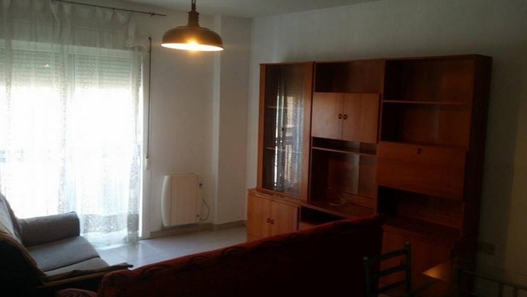 Foto - Piso en alquiler en calle Cartuja, Norte en Granada - 294117551