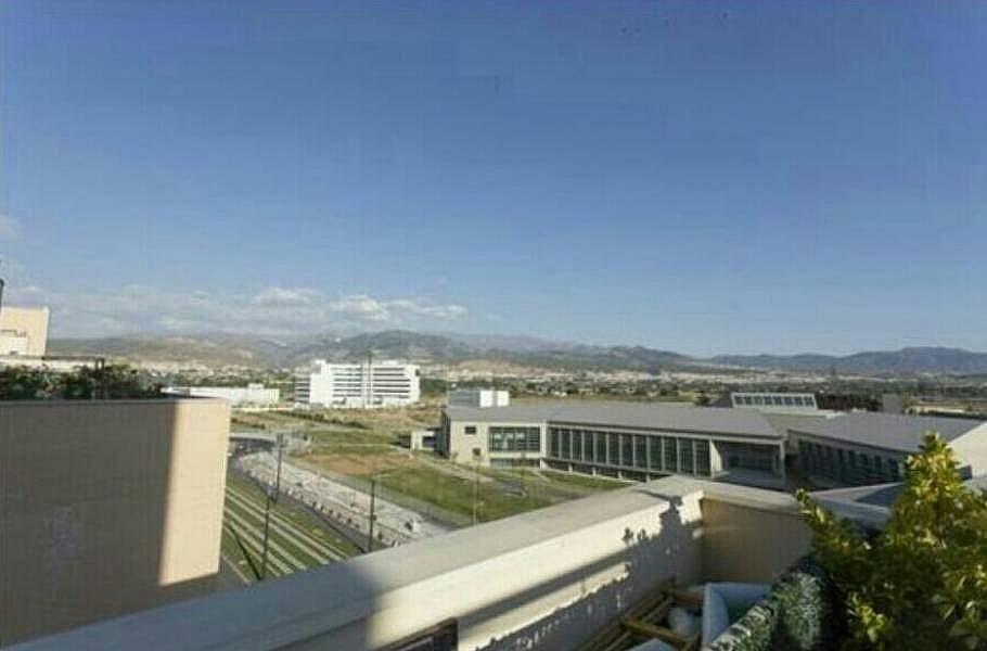 Foto - Piso en alquiler en calle Campus de la Salud, Zaidín en Granada - 314966673