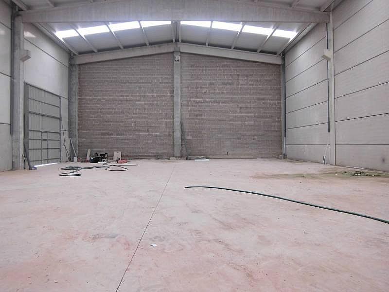 Foto - Nave industrial en alquiler en calle Cervera, Cervera - 310593694
