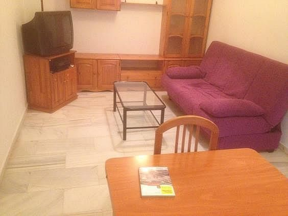 Apartamento en alquiler en Linares - 300156651