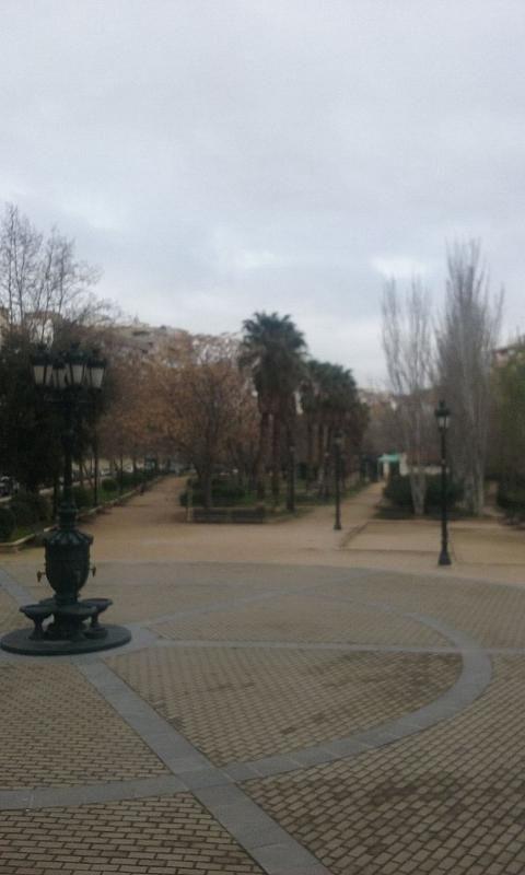 Local comercial en alquiler en calle De Miguel Servet, Las Fuentes – La Cartuja en Zaragoza - 302129381