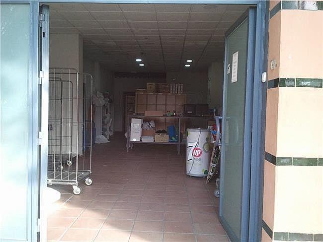 Local comercial en alquiler en Av. Ciencias-Emilio Lemos en Sevilla - 304898840