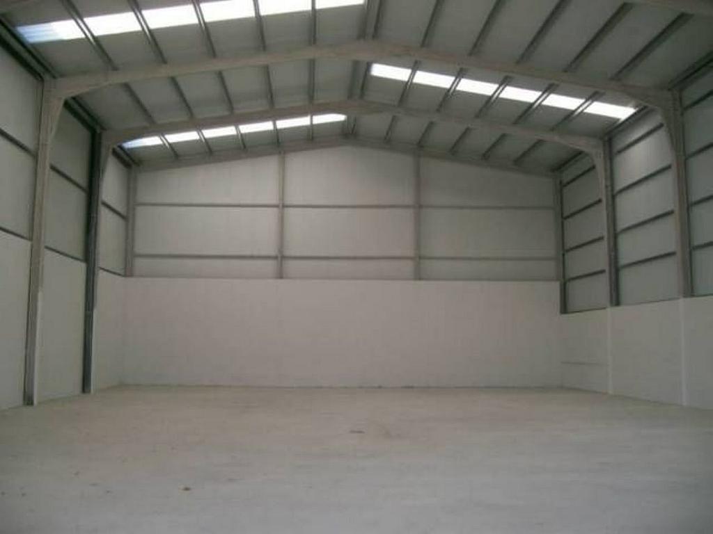 Nave industrial en alquiler en Hontoria - 358294353