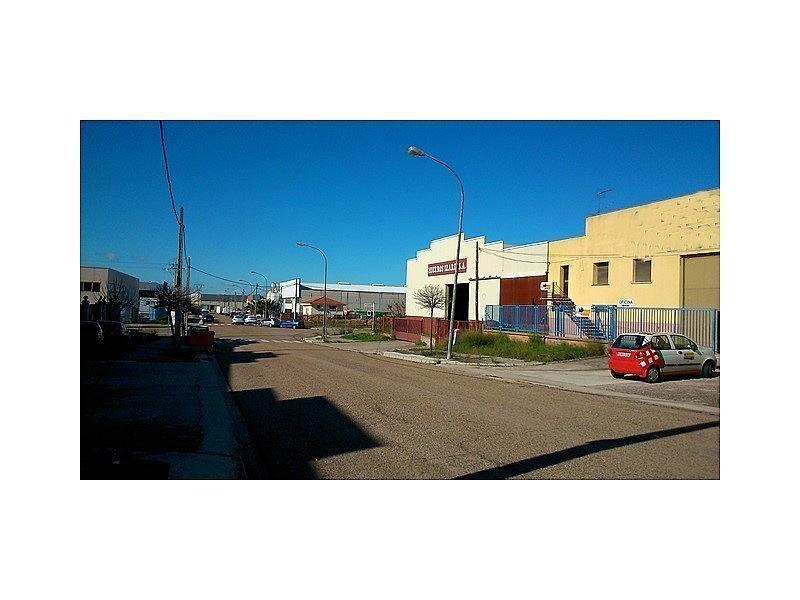 DSC_0408.JPG - Nave industrial en alquiler en Cáceres - 308919276