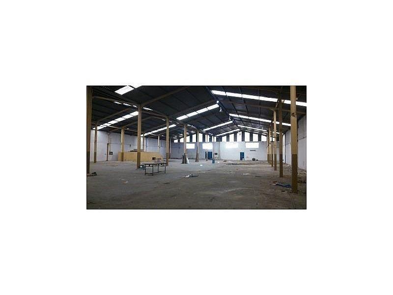DSC_0413.JPG - Nave industrial en alquiler en Cáceres - 308919288