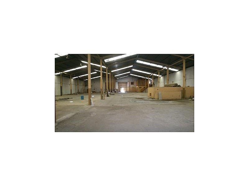 DSC_0414.JPG - Nave industrial en alquiler en Cáceres - 308919291
