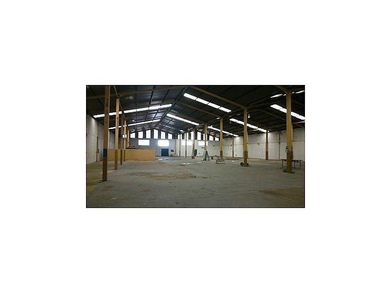DSC_0417.JPG - Nave industrial en alquiler en Cáceres - 308919297