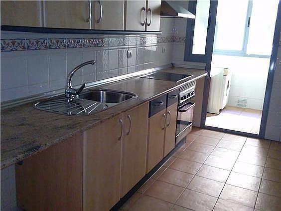 Piso en alquiler en calle Faisan, Beiro en Granada - 324023304