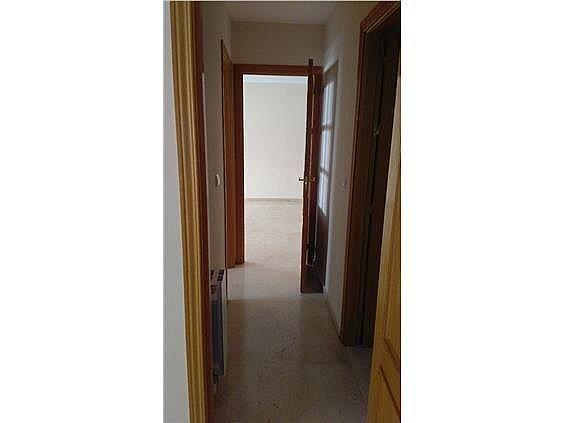 Piso en alquiler en calle Faisan, Beiro en Granada - 324413841