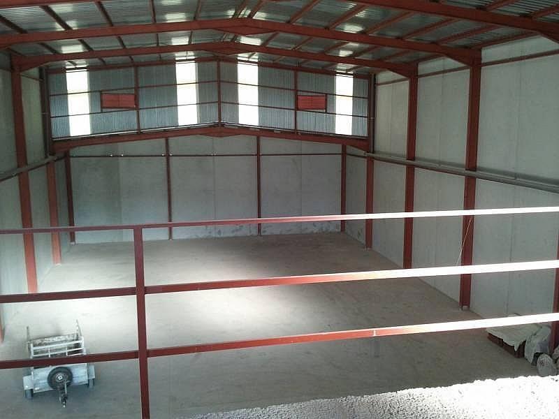 Foto - Nave industrial en alquiler en calle Almazara, San Isidro (Alicante/Alacant) - 322647984