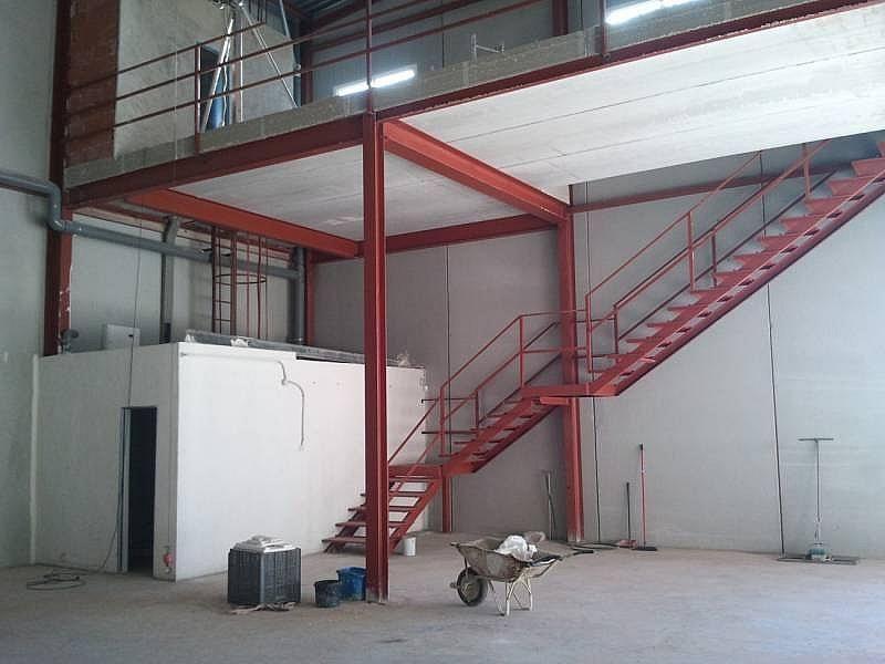 Foto - Nave industrial en alquiler en calle Almazara, San Isidro (Alicante/Alacant) - 322647987